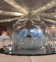 Click here for Bubble Balls / Fish Bowls
